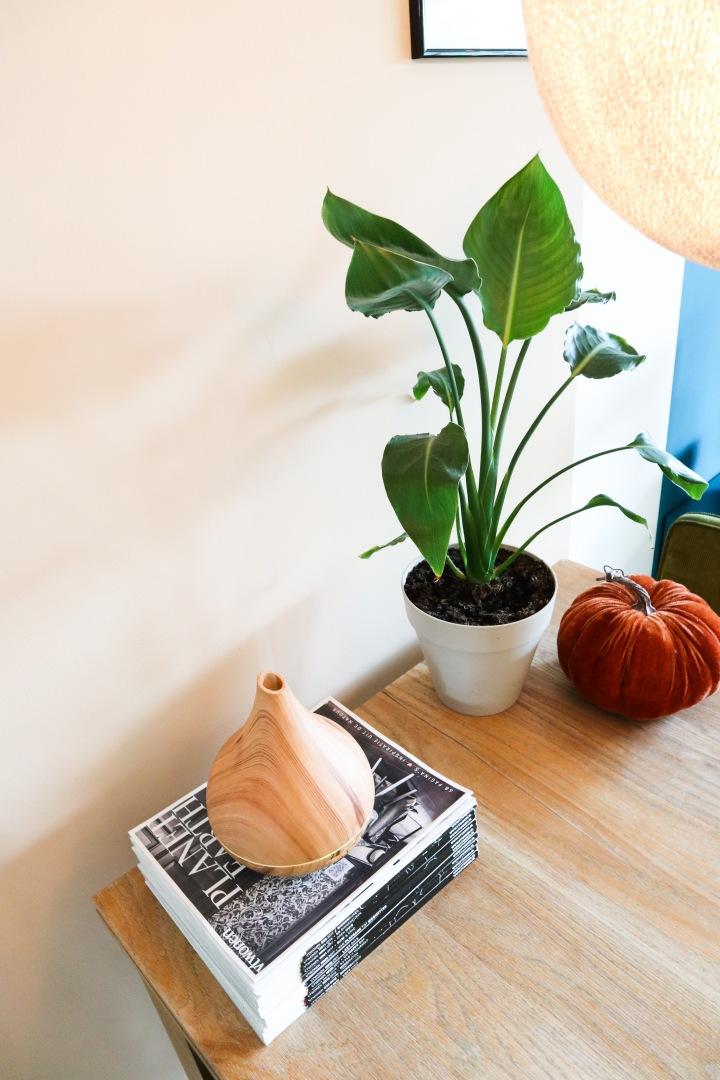 Haal de herfst in huis metGeurwolkje