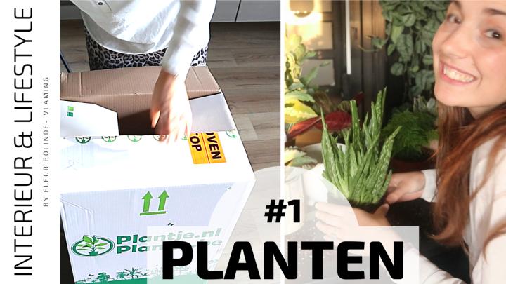 PLANTS #1 Unboxing de groene kneusjes box en een voordeelpakket van Plantje.nl MEGAshoplog