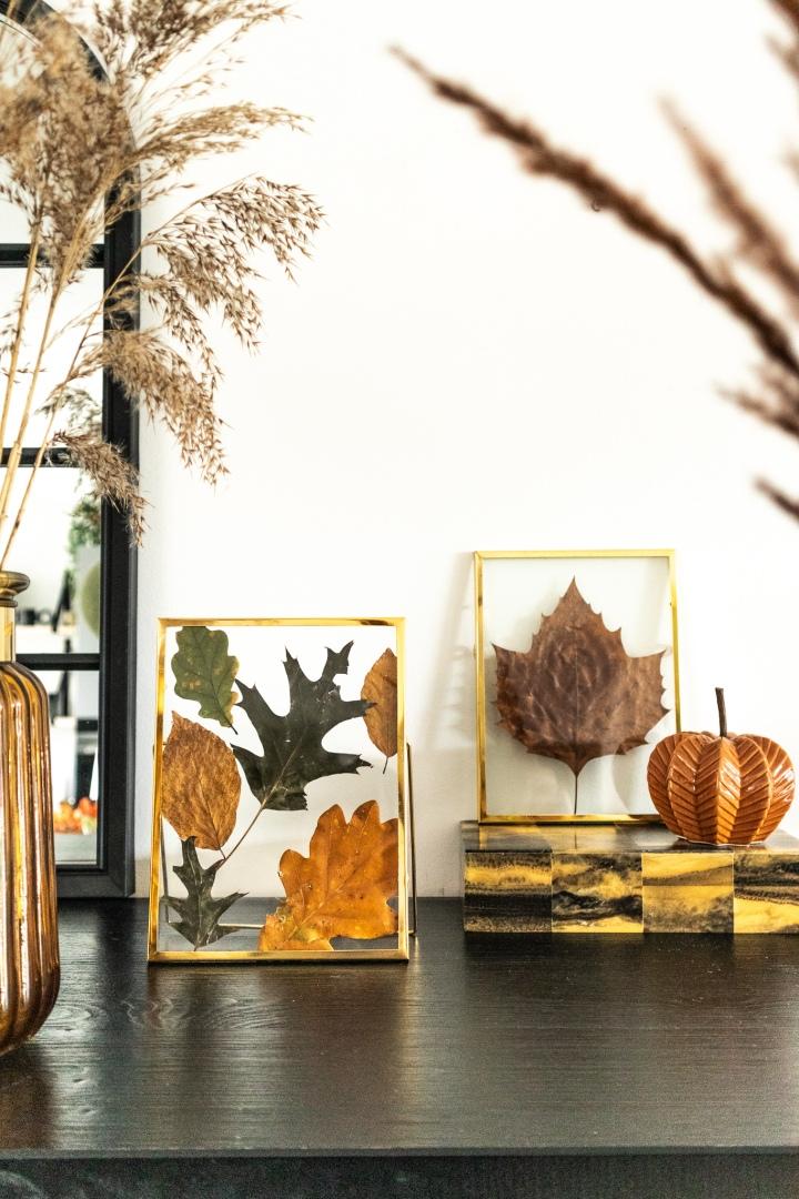 Gedroogde herfstbladeren in transparantefotolijstjes